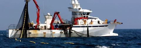 Curso especializado de Pesca para Oficiales